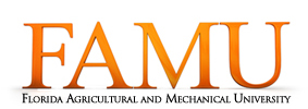 Florida AM Logo