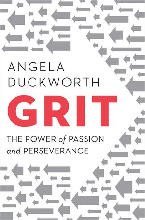 Putting Grit In Its Place >> Taxprof Blog