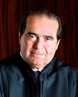 Scalia 2