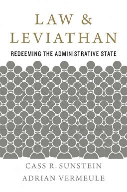 Law & Leviathan