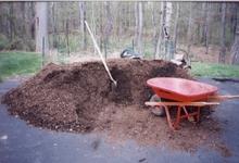Mulch_pile_1